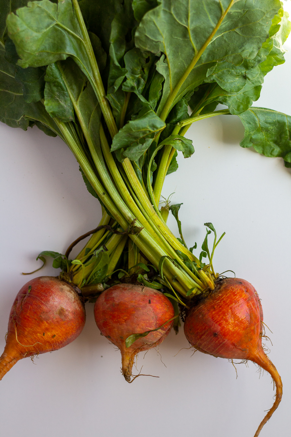 Meet Your Ingredients: Beets