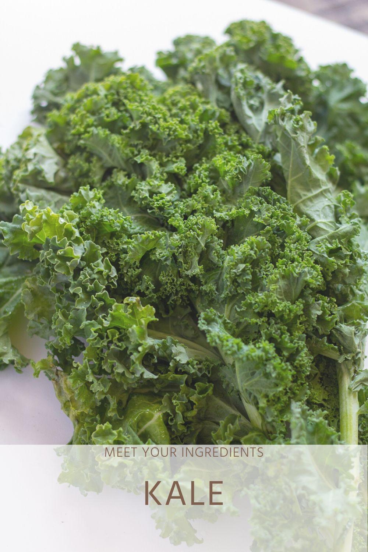 Meet Your Ingredients: Kale